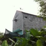 Nhà Yến ở Huế