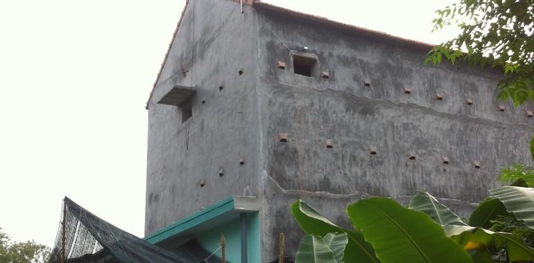 Nhà Yến Phú Vang – Thừa Thiên Huế