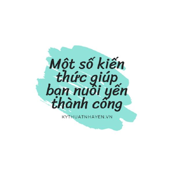nuoi yen thanh cong