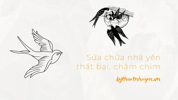sua chua nha yen that bai cham chim